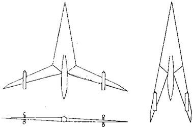 The Oblique or Skewed Wing