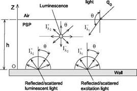 Excitation Light